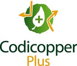 codicopper plusP